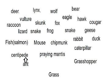 Prey Predator Chart