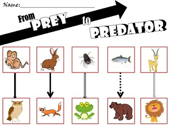 Prey & Predator Match
