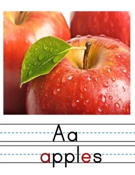 Alphabet Posters for Classroom   Manuscript Alphabet Charts