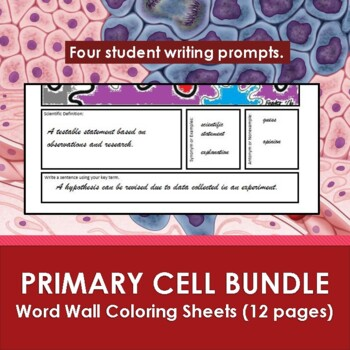 Primary Cells Word Wall Coloring Sheets Bundle (11 pages)
