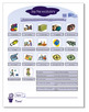 Primary Classroom EFL/ESL Text Book Seven