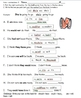 Primary Contractions Unit with Worksheets and Test