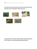 Primary Ecosystems Modified Test