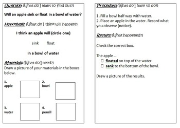 Primary Science Experiment Booklet - Sink & Float