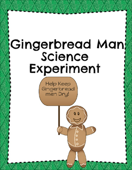 Primary Gingerbread man Experiment!