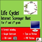 Internet Scavenger Hunt - Primary Grades - Life Cycles