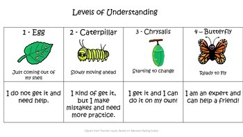 Primary Levels of Understanding and Data Folder