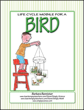 Life Cycle Mobile for a Bird ★ FREEBIE ★