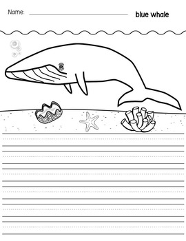 Primary Lined Journal Writing Paper for Sea Life / Ocean Animals Themes