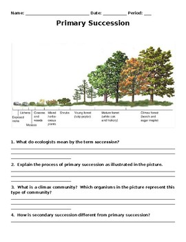 Primary and Secondary Succession Clipart by Curly Que Science | TpT