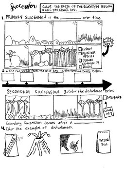 Primary and Secondary Succession