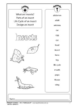 Primary science – Ages 7-8