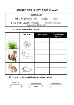 Primary science worksheet: Food Chains