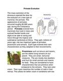 Primate Evolution Common Core Activity