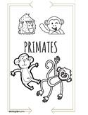 Primate Trivia