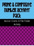 Prime & Composite Numbers Anchor Charts + File Folder Activity