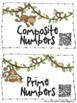 Prime Mates: QR Code Prime and Composite Number Sort {FREE}