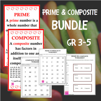 Prime and Composite Bundle