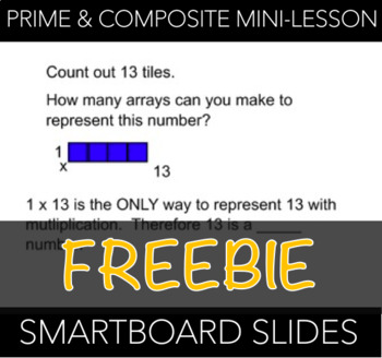Prime and Composite Mini-Lesson