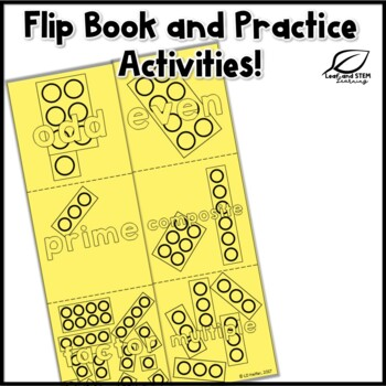 Prime and Composite Numbers Interactive Math Notebook Set