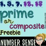 Prime or Composite Activity
