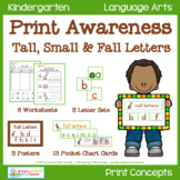 Print Awareness - Tall, Small & Fall Letters