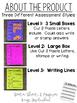 Print & Go CVC Word Spelling Assessment