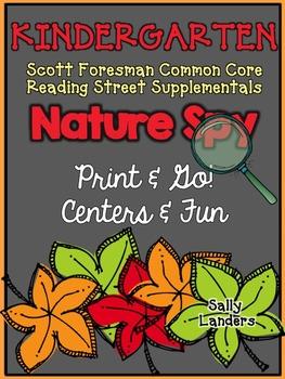 Print & Go Pack! NATURE SPY {Kindergarten Scott Foresman CC Reading Street}