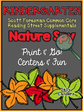 Print & Go Pack! NATURE SPY {Kindergarten Scott Foresman CC Reading Street}