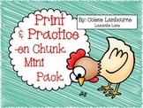 Spelling Print & Practice -en Mini Pack
