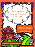 Print and Go Journal Prompts for June