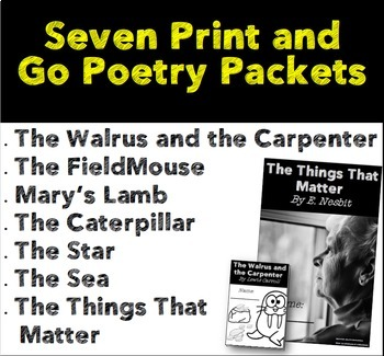 Print and Go Poetry Packets for Grade 3-6: Bonus Vocabulary Posters