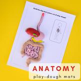 Human Body Anatomy Printable Play-Dough Mats