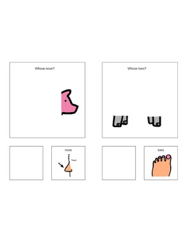 Printable Book for Possessives:  Whose Nose and Whose Toes?