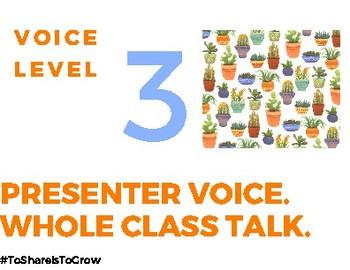 Printable Cactus Theme Voice Level Chart