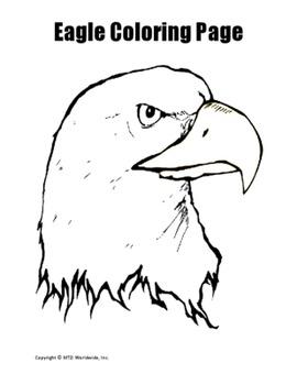 Printable Eagle Coloring Worksheet Pages