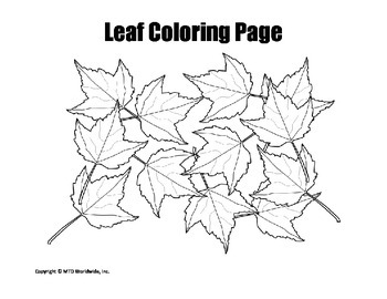 Printable Fall and Autumn Leaf Coloring Page Bundle