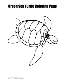 Printable Green Sea Turtle Coloring Page Worksheet By Lesson Machine