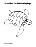 Printable Green Sea Turtle Coloring Page Worksheet