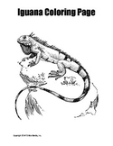 Printable Iguana Coloring Page Worksheet
