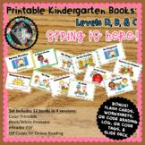 Printable Leveled Books Kindergarten - Spring is Here Levels A, B, & C Bundle