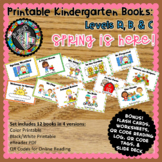 Guided Reading Books Kindergarten - Spring is Here Levels