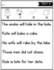 Printable Phonics Fluency: Sentences