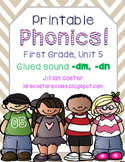 Printable Phonics Pack! 1st Grade, Unit 5, Glued sounds -am, -an!