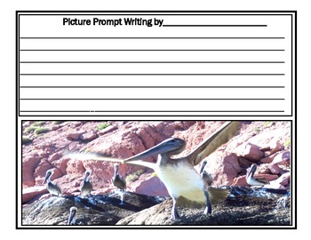 Printables: Bird Picture Writing Prompts for all Grades
