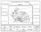 Printables: Label the Parts of a  Rabbit