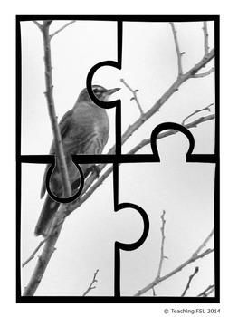 Spring Vocab / Cartes photographiques et vocabulaire de printemps