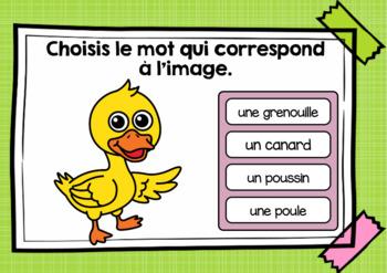 Printemps - Vocabulaire Ensemble - French Spring - BOOM cards - Bundle