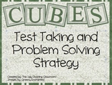 Problem Solving Strategy Posters - CUBE