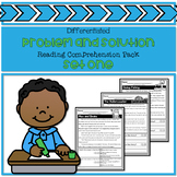 Problem and Solution Reading Comprehension Pack